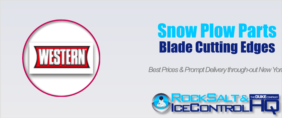 Picture of Western Pro Snow Plow Part #WP96SPL Blade Cutting Edge