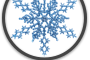Picture of Snow Flake